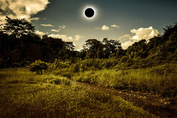Scientific natural phenomenon. Total solar eclipse glowing on sky in forest.