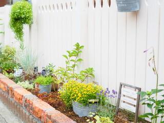かわいい花壇