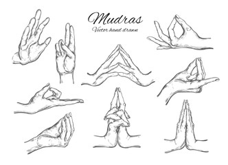 Vector hand drawn set of 9 mudras. Isolated on white. Yoga. Spirituality
