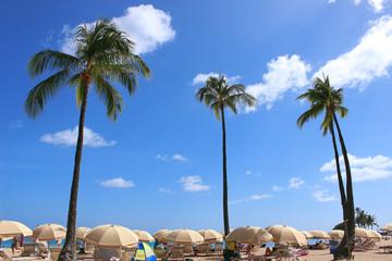ワイキキビーチ ハワイ オアフ島