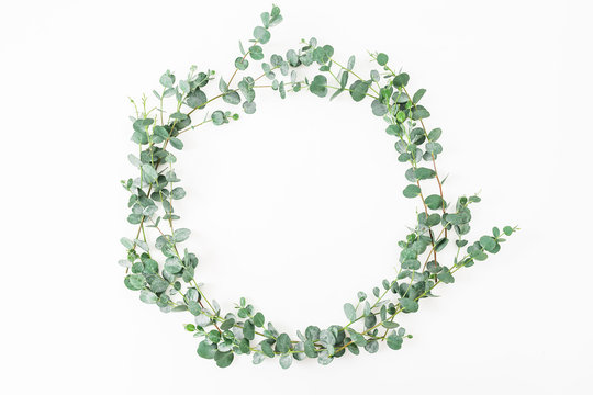 Floral round frame made of eucalyptus branches on white background. Flat lay, top view