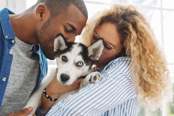 Multi-ethnic couple kissing Siberian Husky at home