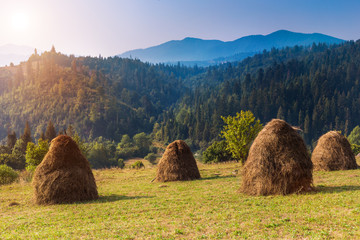Landscapes of Carpathians