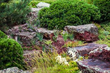 Fotobehang Tuin Stones for the alpine slide, house garden landscaping design. Plants and rocks in landscape background