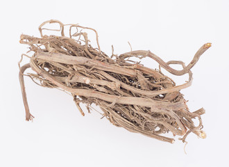 Medicinal roots de zarzaparrilla - Smilax aspera