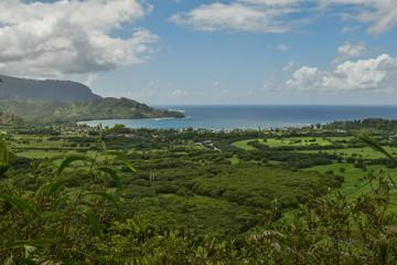 Hanalei Bay Overlook
