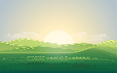 Spoed Foto op Canvas Beige Summer green meadow and mountain landscape with sunset. vector illustration