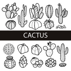 Set of isolated cactus and succulents in black outline. Vector illustration.