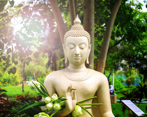 The Buddha is located in the middle of the garden with lotus flowers in the garden.