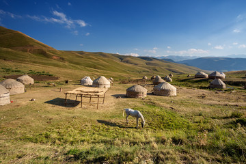 Yurts in the pasture