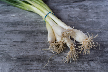 closeup of green onions