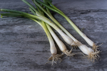 bunch of loose green onions on gray rustic table