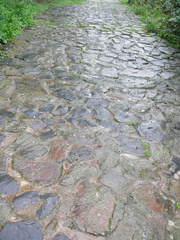 beautiful wet stone path