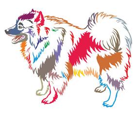 Colorful decorative standing portrait of Keeshound vector illustration