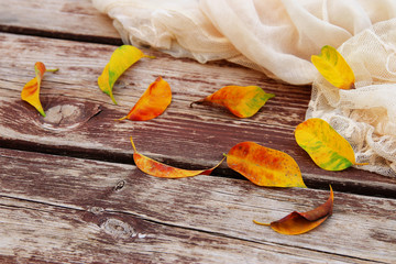 delicate scarf and golden dry leaves on old wooden table outdoor in the park