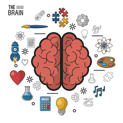 colorful poster the brain in top view of its two hemispheres and icons around vector illustration