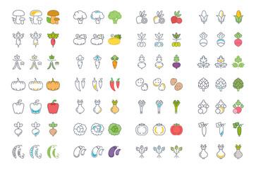 Set Vector Illustration of Vegetables on White Background