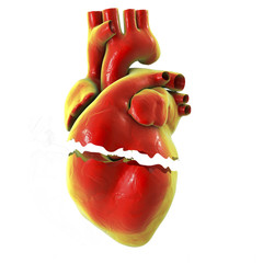 Realistic broken heart isolated on white background, separation and divorce concept, 3D illustration