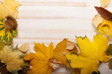 autumn leaf frame for words and inscriptions, copy space