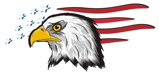 Eagle, bird, bald eagle, head, white, America, USA, cartoon, american, head, hunter, 4 july, flag, lines, stars