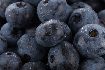 blueberries with water drops close up