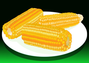 Corn on the plate, vector