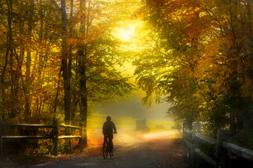 Bike trail in misty morning day in autumn time