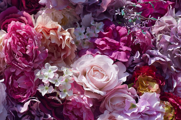 Peony flower background. Pink flower decoration.