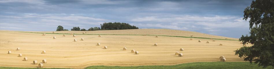 Fotoväggar - Landschaft im Sommer, abgeerntetes Kornfeld mit Strohballen, Panorama