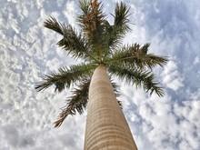 gesellschaft gmbh mantel kaufen wiki Sonnenschutzsysteme gmbh anteile kaufen notar Vorratsgmbhs