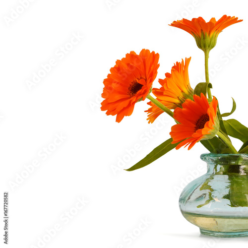 Mothers Day flowers isolated on white background