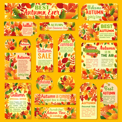 Autumn sale tag and label set with fall leaf