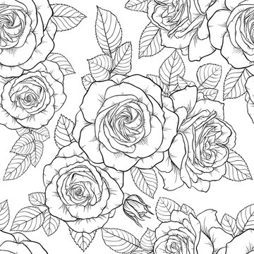 Beautiful monochrome black and white seamless pattern with roses, leaves. Hand drawn contour lines.