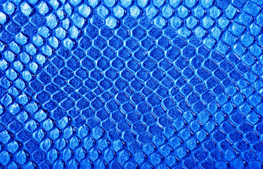 Blue snake skin, can be used as a background