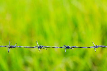 barbed wire razor-wire barriers