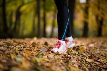 Fitness woman jogging on dry maple leaves