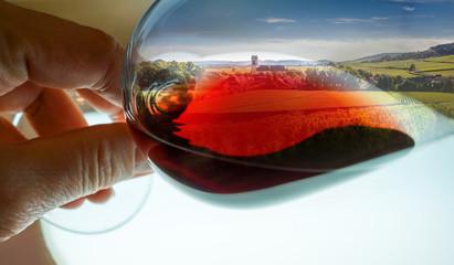 composition vignes dans verre de vin