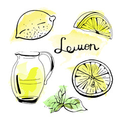 Vector set of hand drawn lemonade, lemon and mint on watercolor background.