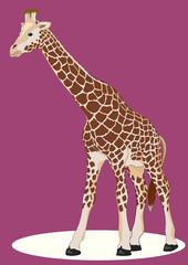 Teen Giraffe
