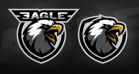 Head of the eagle, sport logo.