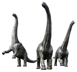 3D rendering of an Alamosaurus pack, isolated on a white background.