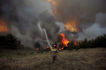 A firefighter tries to extinguish a fire during a wildfire near the village of Metochi