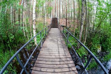 Suspension bridge in the park.