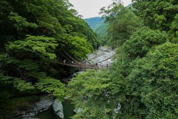 祖谷のかずら橋/徳島県