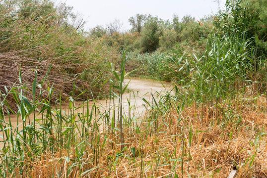 Jordan river , Israel