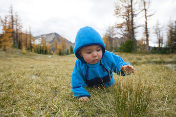 Front view of baby boy crawling in grass