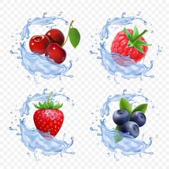 Forest berry juice. Realistic illustration of fruit fresh vector icon