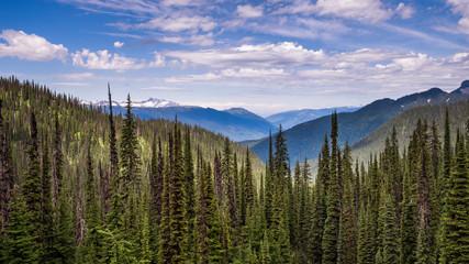 Meadows In The Sky Fototapete