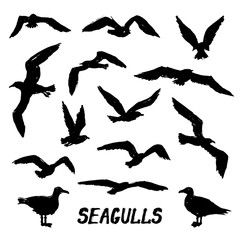 Seagulls - Set of 14 grunge hand-drawn birds