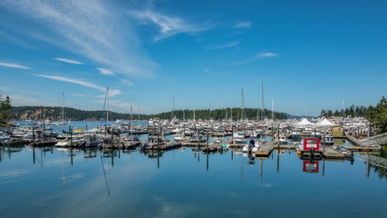 Roche Harbor View